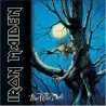 """Iron Maiden """" Fear Of The Dark """""""