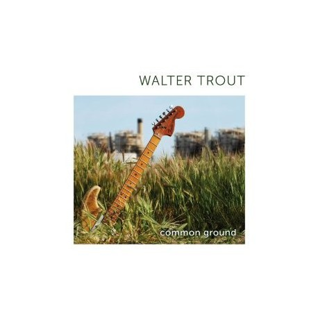 """Walter Trout """" Common Ground """""""
