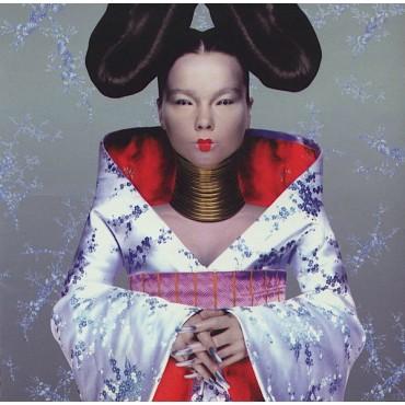"""Björk """" Homogenic """""""
