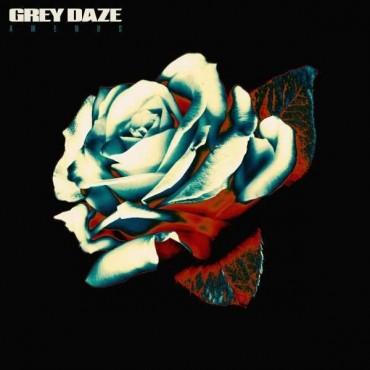 "Grey Daze "" Amends """
