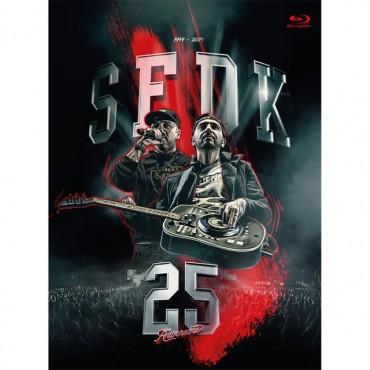 """Sfdk """" Concierto 25 aniversario """""""