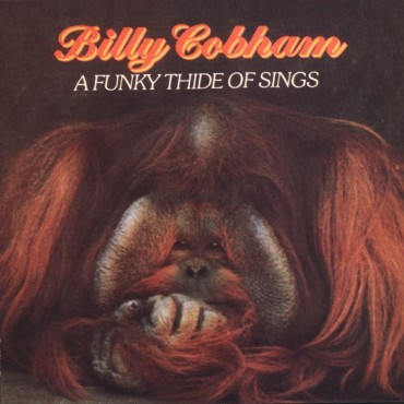 """Billy Cobham """" A funky thide of sings """""""