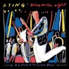 "Sting "" Bring on the night """
