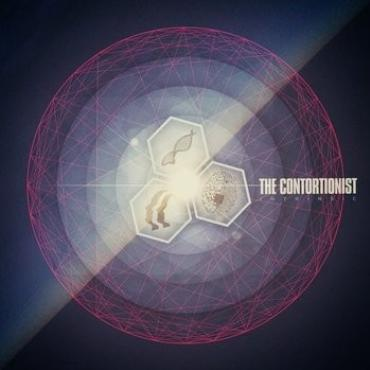 "The Contortionist "" Intrinsic """