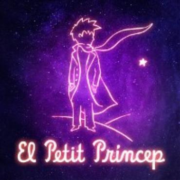 El petit príncep V/A