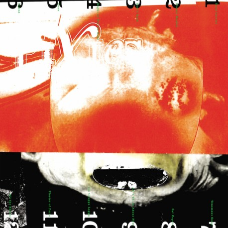 "Pixies "" Head carrier """